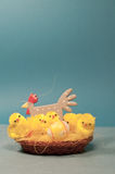 Pollos de Pascua Fotografía de archivo