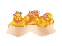 Pollos del bebé de Pascua Imagen de archivo