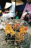 Pollos en el mercado fotos de archivo
