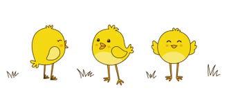Pollos lindos de la historieta aislados en blanco Foto de archivo