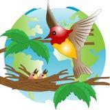 Polluelo libre illustration
