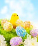 Polluelo con los huevos de Pascua Foto de archivo