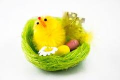 Polluelo de Pascua Fotografía de archivo