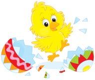 Polluelo de Pascua Fotos de archivo libres de regalías