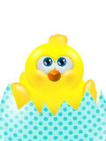 Polluelo de Pascua en el huevo que parece para arriba aislado sobre blanco Foto de archivo libre de regalías