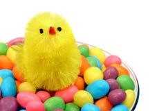 Polluelo de Pascua en el vidrio de Champán del caramelo Imágenes de archivo libres de regalías