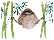 Polluelo de un gorrión en bambú Imagen de archivo libre de regalías