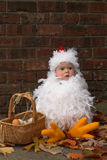 Polluelo del bebé Imagen de archivo libre de regalías
