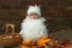 Polluelo del bebé Imagen de archivo