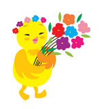 Polluelo lindo Imagen de archivo libre de regalías