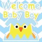 Polluelo lindo en historieta del huevo en tarjeta azul del fondo del galón, de la postal de la fiesta de bienvenida al bebé, del  Foto de archivo