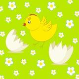 Polluelo y huevo lindos del vector Imagen de archivo