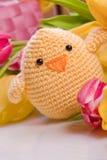 Polluelo y tulipán por los días de fiesta de pascua Imagen de archivo