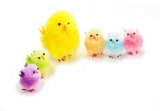 Polluelos de Pascua Fotografía de archivo libre de regalías