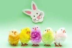 Polluelos de Pascua Fotografía de archivo