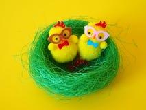 Polluelos de Pascua en jerarquía verde fotos de archivo