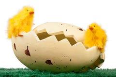 Polluelos de Pascua en una cáscara de huevo imagenes de archivo