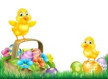 Polluelos y campo de la cesta de los huevos de Pascua Fotografía de archivo libre de regalías