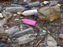 Polluted озеро Загрязнение в воде Пластичные бутылки Заболевания и болезни стоковая фотография rf