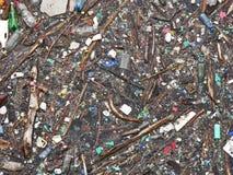 Polluted озеро Загрязнение в воде Пластичные бутылки Заболевания и болезни стоковая фотография