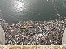 Polluted озеро Загрязнение в воде Пластичные бутылки Заболевания и болезни Стоковые Фото