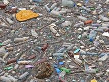 Polluted озеро Загрязнение в воде Пластичные бутылки Заболевания и болезни стоковое фото rf