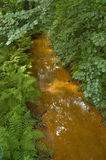 polluted река стоковое изображение rf