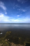 Polluted Baltic Sea open waters with blue sky. Dramatic clouds over Baltic Sea with gold sand Royalty Free Stock Photo