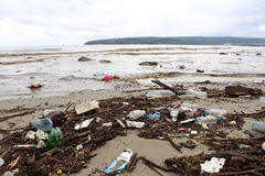 Polluted beach with trash Stock Image