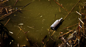 Polluted Lake. A bottle floats on a polluted lake royalty free stock image