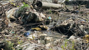 Polluted mountain river. Plastic rubbish on branches. On banks stock video