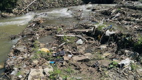 Polluted mountain river. Plastic rubbish on branches. On banks stock video footage