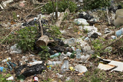 Polluted nature. Garbage in the forest Royalty Free Stock Image
