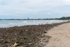 Polluted ocean. Garbage on the beach makes the beach unattractive. Dirty and waste on Bali, Indonesia Royalty Free Stock Photos