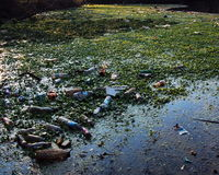 Polluted River Stock Images