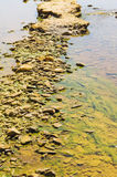 Polluted river detail. Detail of polluted river by chemicals near an abandoned mine Royalty Free Stock Images