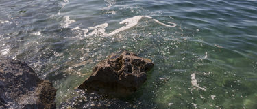 Polluted sea Stock Photography