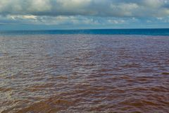 Polluted sea Royalty Free Stock Photo