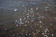 Free Polluted Sea Water With Waste Materials Royalty Free Stock Photos - 187865218