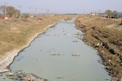 Polluted Stream Royalty Free Stock Image