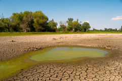 Polluted water and cracked soil of dried out lake during drought Royalty Free Stock Photography