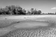 Polluted water and cracked soil of dried out lake during drought Stock Images