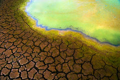 Polluted water and cracked soil Royalty Free Stock Photo