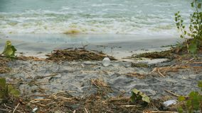 Polluted water splashing on shore, danger to health, environmental disaster. Stock footage stock video footage