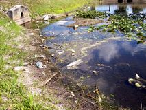 Polluted Water Way. Polluted waterway showing debris and fungus infestation royalty free stock images
