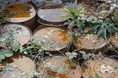 Pollution Photos libres de droits
