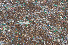 Pollution. Polluted lake with plastic bottles and wood royalty free stock photos