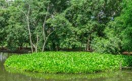 Pollution atmosphérique, environnement, problèmes environnementaux, déchets, Liqui photographie stock