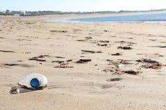 Pollution on beach. Plastic water bottle littering sandy beach in São Martinho do Porto Stock Photos
