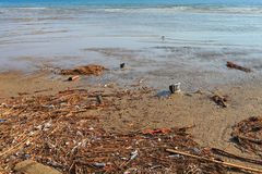 Pollution on the coast Royalty Free Stock Photo